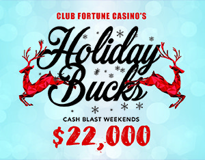 17-12-312x234-72dpi-Dec-Website-HolidayBucks